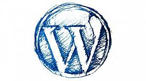 آموزش وردپرس wordpress | آموزش طراحی سایت رایگان نیو دایو